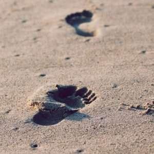 A photo by Christopher Sardegna. unsplash.com/photos/iRyGmA_no2Q