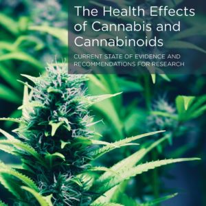 Cannabis report Cover Final