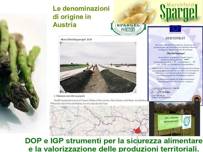 asparagi austria