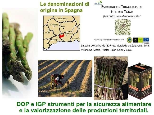 asparago spagna huetor