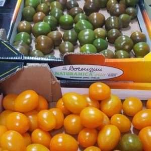 scatole pomodori colorati tris benessere lorenzini