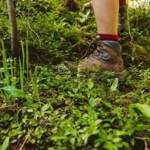 piedi nel bosco