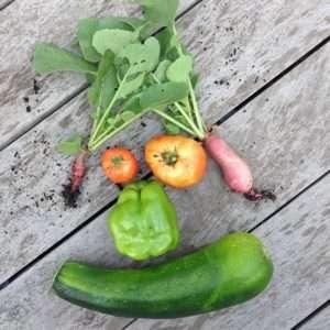 ortaggi deformati cibo sostenibile